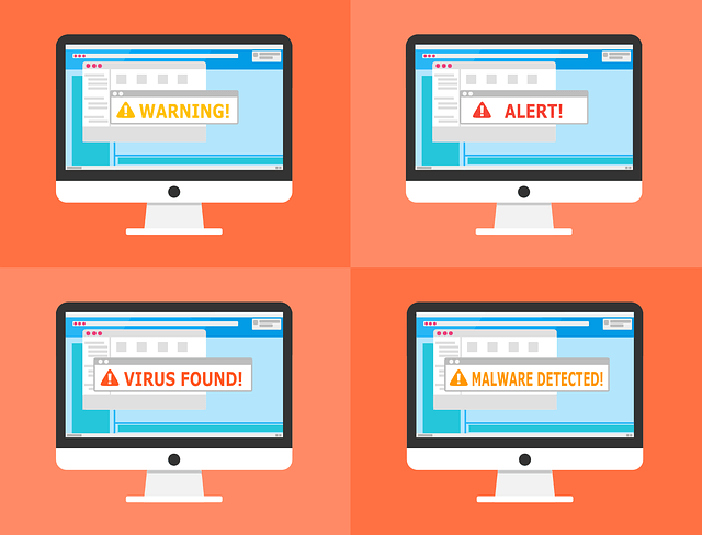 viruses, malware and hackers make the internet a dangerous place